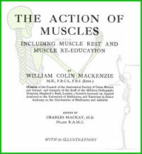 The Action of Muscles Including Muscle Rest and Muscle Re-Education